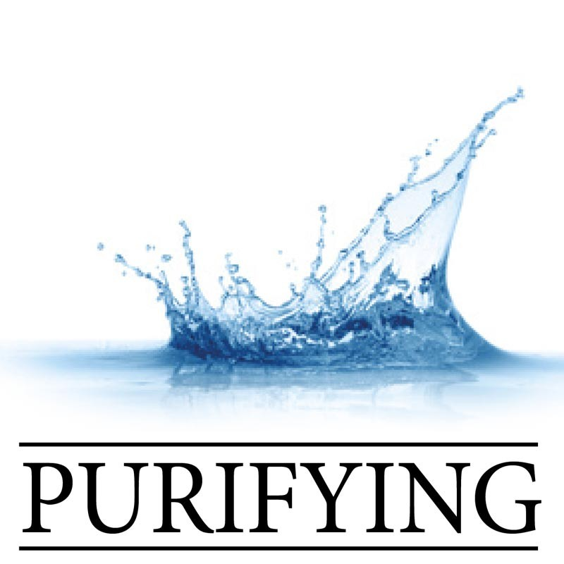 Linea Purifying